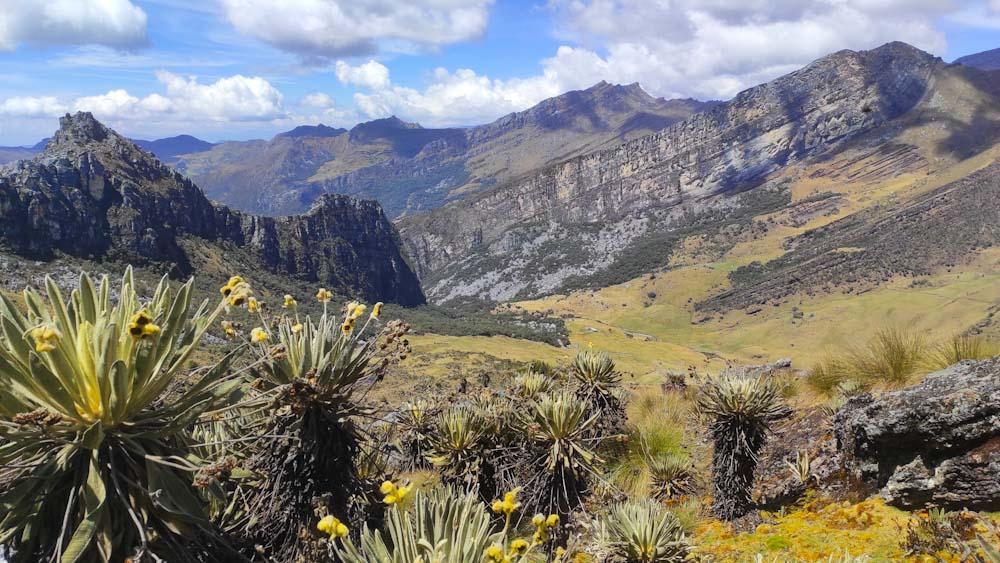 kolumbien-sehenswuerdigkeiten-paramo-natur