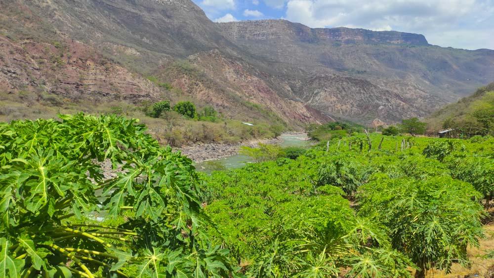 kolumbien-sehenswuerdigkeiten-fluss-canyon