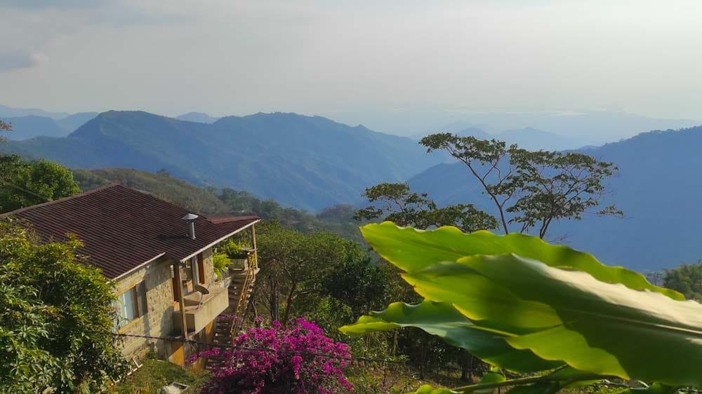 kolumbien-sehenswuerdigkeiten-minca-regenwald